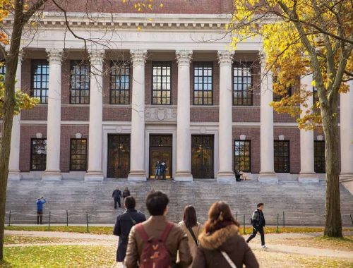 Harvard University Ties