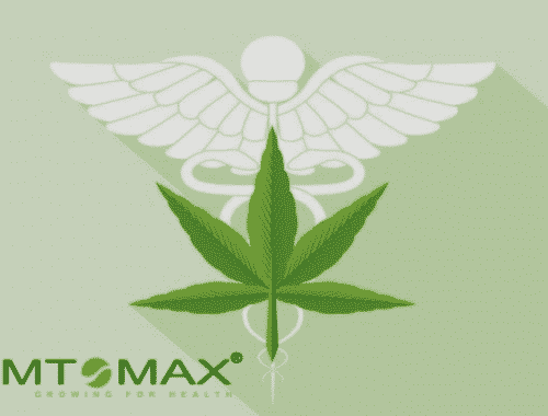 Symtomax Appoints Former Portugal State Secretary of Health as Its BOD
